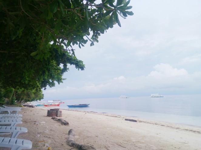 Bohol Beach panglao accommodation,where to stay, momo beach house panglao bohol