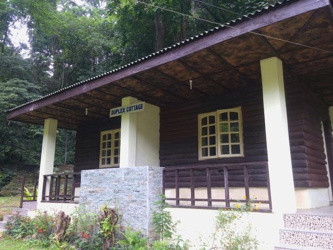 magsaysay park bilar bohol, places to go bohol, nature wildlife bohol, camping bohol, trekking bohol