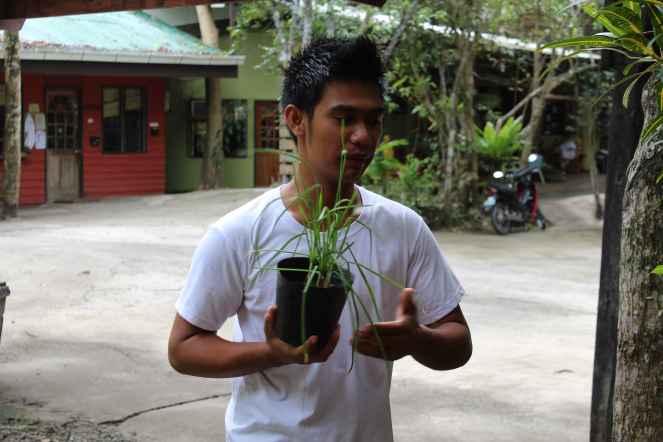Bohol Bee Farm Tour, Bohol Philippines, bohol tours, bohol ecotourism site, places to visit in bohol, tourist site in bohol