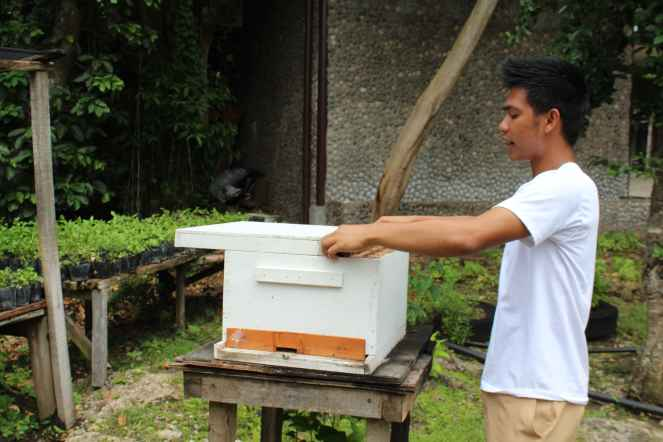 Bohol Bee Farm Tour, Bohol Philippines, bohol tours, bohol ecotourism site, places to visit in bohol, tourist site in bohol