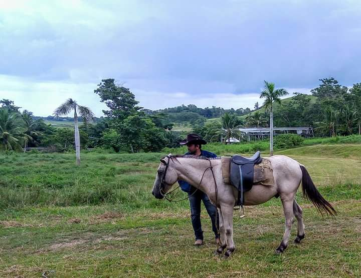 Horseback Riding, Ubay Stock Farm, Ubay Bohol, Places to go in Ubay Bohol, Ubay Blog, Bohol Blog, bohol blogger, ecotourism bohol, farm tourism bohol